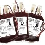 bolsas sangre