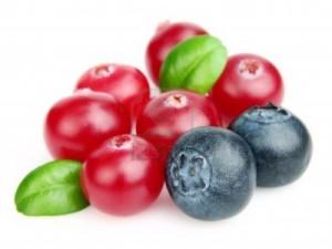 11743509-arandano-con-arandanos-utilicela-para-un-concepto-de-salud-y-nutricion