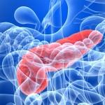 DIABETES-PANCREAS2