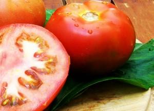 fotos tomates 003