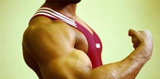 super_musculos