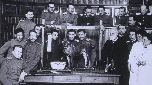 Iván Pávlov, su equipo y su perro